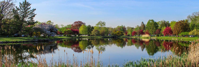 Bruce-Park